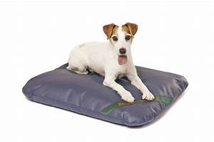 17 best images about best dog beds on pinterest logos With best odor resistant dog bed