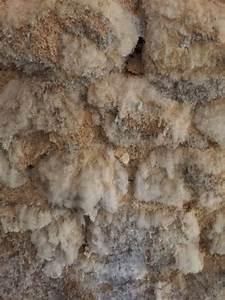 Humidité Mur Extérieur : humidit mur ext rieur maison lyon traitement humidit ~ Premium-room.com Idées de Décoration