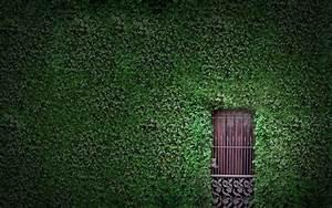 Hidden door free desktop backgrounds and wallpapers