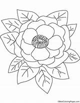 Coloring Peony Bestcoloringpages Peonies Printable Flowers Sheets Printables Embroidery sketch template