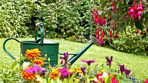 Mein Garten Tipps Für Die Gartengestaltung