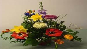 Blumen In Der Box : fr hlingsdekoration mit blumen selber machen deko ideen mit flora shop youtube ~ Orissabook.com Haus und Dekorationen