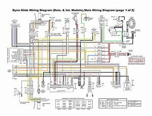 Diagram  Harley Wiring Diagram For Dummies 2013 Full