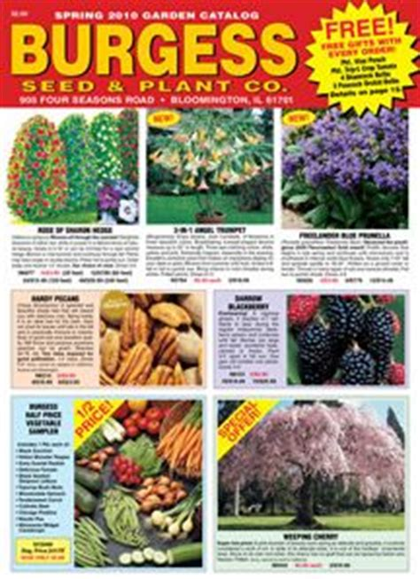 Plant Nursery Catalogs Free by Burgess Seed Amp Plant Co Website Seed Packets Amp Catalogs