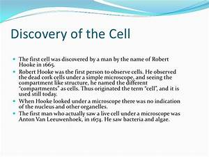 Cell Introduction And Cell Differentiation