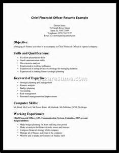 Chief Resume Objective by Chief Operating Officer Resume Objective Officer