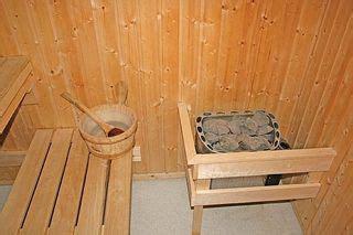 build  cheap sauna sapling sauna design sauna diy homemade sauna