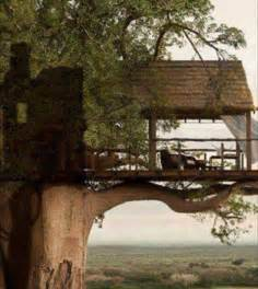 Architecture Tree Houses