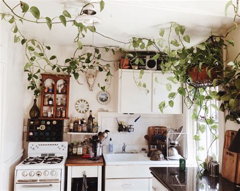 earthy clean white kitchen dwell bohemian kitchen