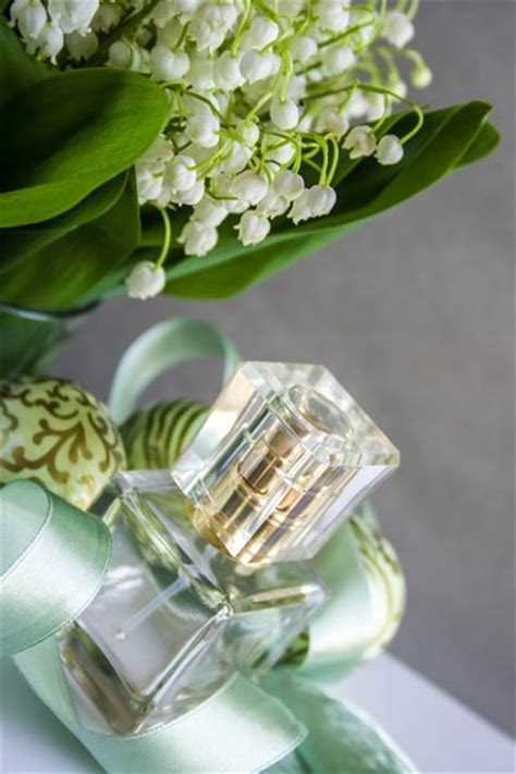 Parfum Mit Maiglöckchenduft parfum rezept frisch blumiges parfum mit maigl 246 ckchenduft