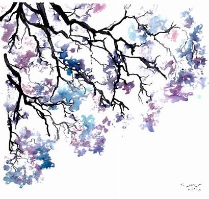 Watercolor Tree Jacaranda Trees Drawing Background Transparent