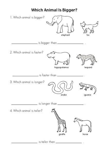 zoo animal facts worksheet for kindergarten 1st grade lesson planet