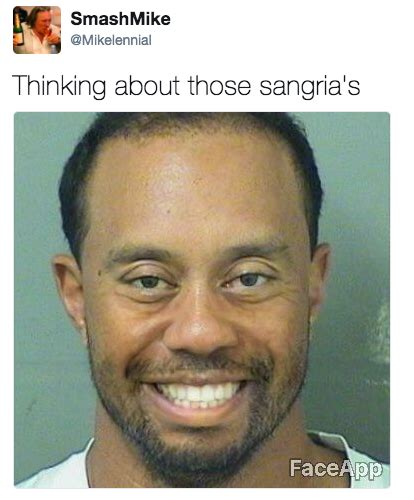 Tiger Woods Meme - tiger woods got a dui and the internet is already making mugshot memes thechive