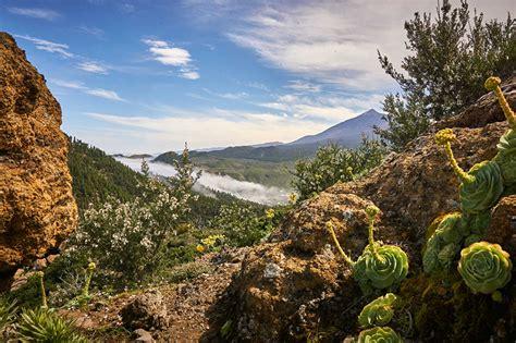 hintergrundbilder kanarische inseln spanien tenerife natur