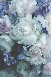 Langage Des Fleurs Pivoine : pingl par morgane m t sur flower power pinterest flowers beautiful flowers et peonies ~ Melissatoandfro.com Idées de Décoration