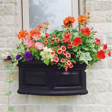 mayne  nantucket  watering plastic window box planter reviews wayfair