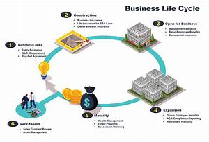 The Business Life Cycle  A Guide For Franchise Owners