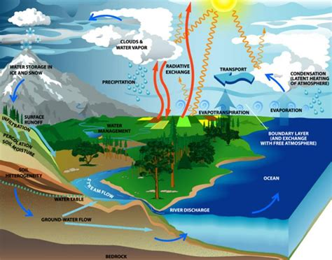 Scientific Facts On The Water Cycle Wikybrewcom