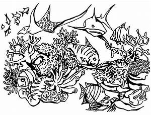 Saltwater Fish Coloring Pages Coral Reef And Sea Turtle