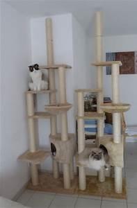 Arbre À Chat Pas Cher : arbre a chat xxl pas cher ~ Nature-et-papiers.com Idées de Décoration