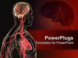 powerpoint template human body anatomy with brain blood With anatomy ppt templates free download