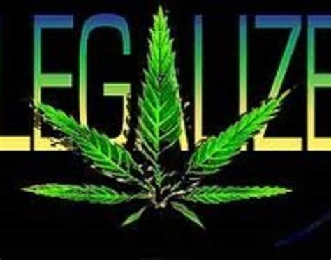 twenty three states now legalized marijuana ecannabis news