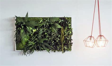Pflanzenwand Selber Bauen Das Wichtigste Knowhow Für Den