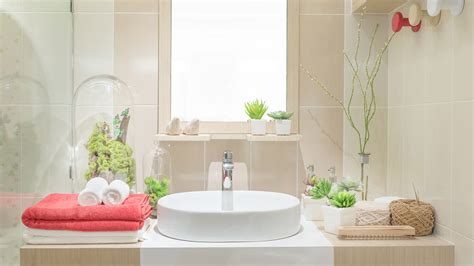 3 benefits of bathroom and shower plants today com