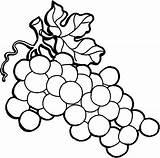 Grapes Coloring Pages Wine Vine Grape Vines Drawing Line Draw Raisins Colorluna Printable Getcolorings Getdrawings Leaves Purple Floral sketch template