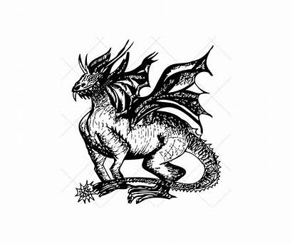 Dragon Sketch Vectors Vector Dragons Graphic Realistic
