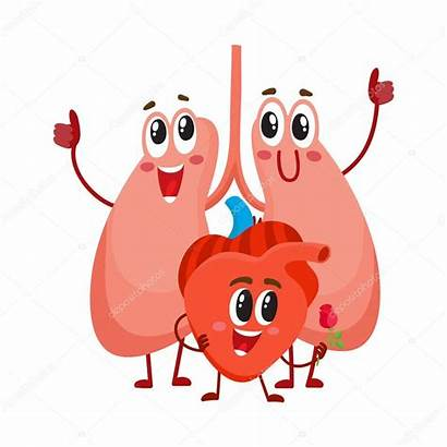 Lungs Heart Chest Funny Human Vector Healthy