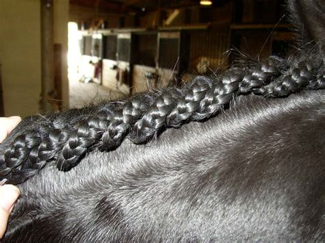 braiding banding jobs   blow  mind