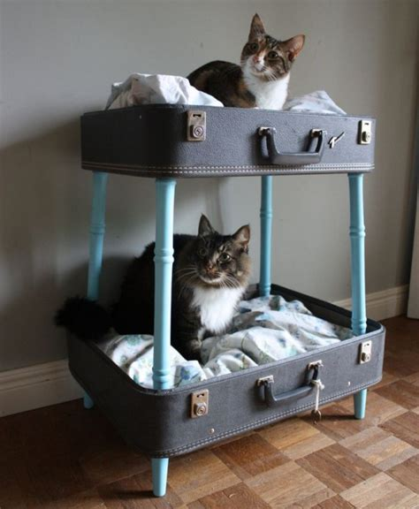 creative cat furniture spoil your kitty 27 creative and cozy cat beds digsdigs