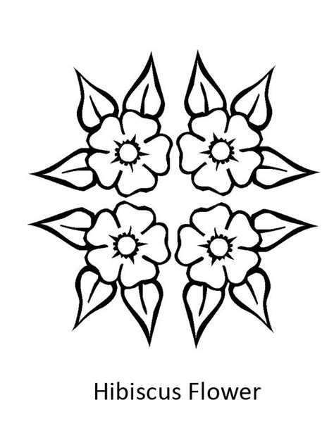 beautiful hibiscus flower coloring page color luna