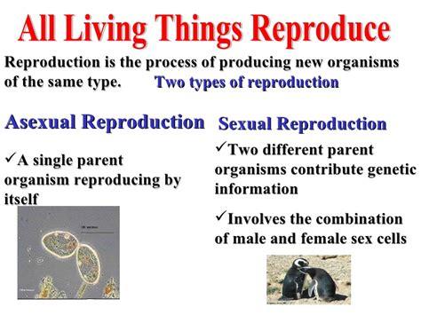 biology characteristics  living