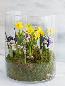 Blumenzwiebeln Im Glas : sch ne fr hlingsdeko fr hling pinterest diy fr hlingsdeko fr hlingsdeko und deko selber ~ Markanthonyermac.com Haus und Dekorationen