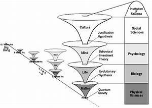 Tok Diagram  The Traditional Tok Diagram Case Study