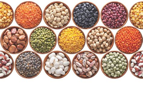 legumes cuisines legumes eat your way to better health