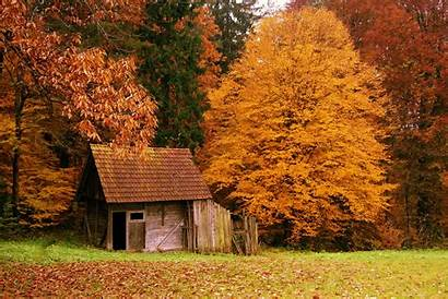 Fall Country Scenes Scenery Autumn Forest Landscapes