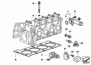 Original Parts For E46 316i 1 9 M43 Sedan    Engine   Cylinder Head Attached Parts