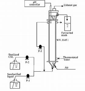 A Schematic Diagram Of The Continuous Ethanol Fermentation