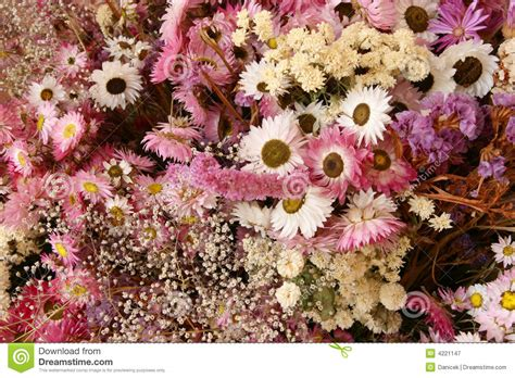 Dry Flowers Decoration For Home: Dried Flowers Decoration Royalty Free Stock Photography