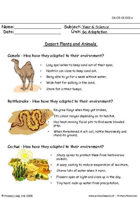 primaryleapcouk desert plants  animals worksheet