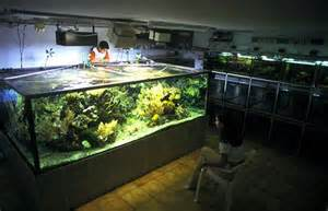 achat aquarium 1000 litres