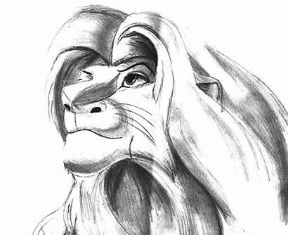 Lion King Simba Drawing Drawings Sketches Debb
