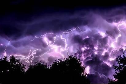 Lightning Trees 4k Wallpapers Desktop Screen Mobile