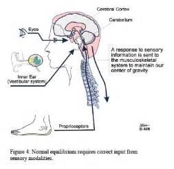Pin by Carrie on Vestibular Disorder - Pinterest  Agoraphobia Dizziness / Balance / Vestibular Disorders
