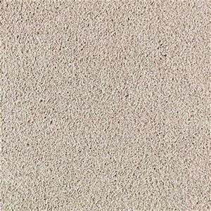 Texture - Carpet - The Home Depot