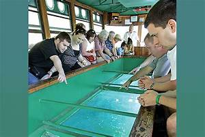 Glass bottom boat silver springs