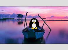 Lustige Guten Morgen Grüße mit dem kleinen Pinguin YouTube